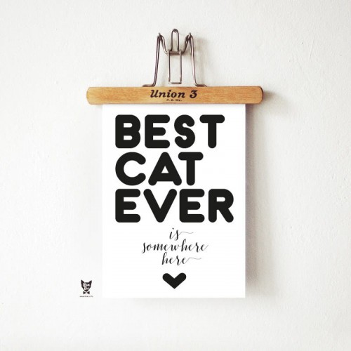 Plakat BEST CAT EVER