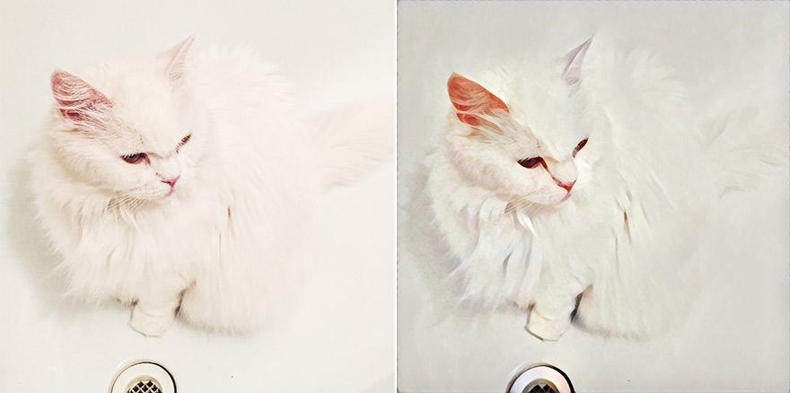 13942b907eb Aplikacja Prisma Biały Kot